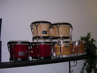 Choix de bongos